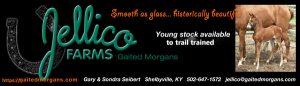 Jellico Farms Smooth Glass