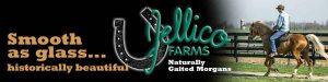 Jellico farms banner