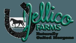 Naturally gied Morgans Jellico Logo